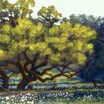 Grazing In Granduer Landscape Mike Mahon