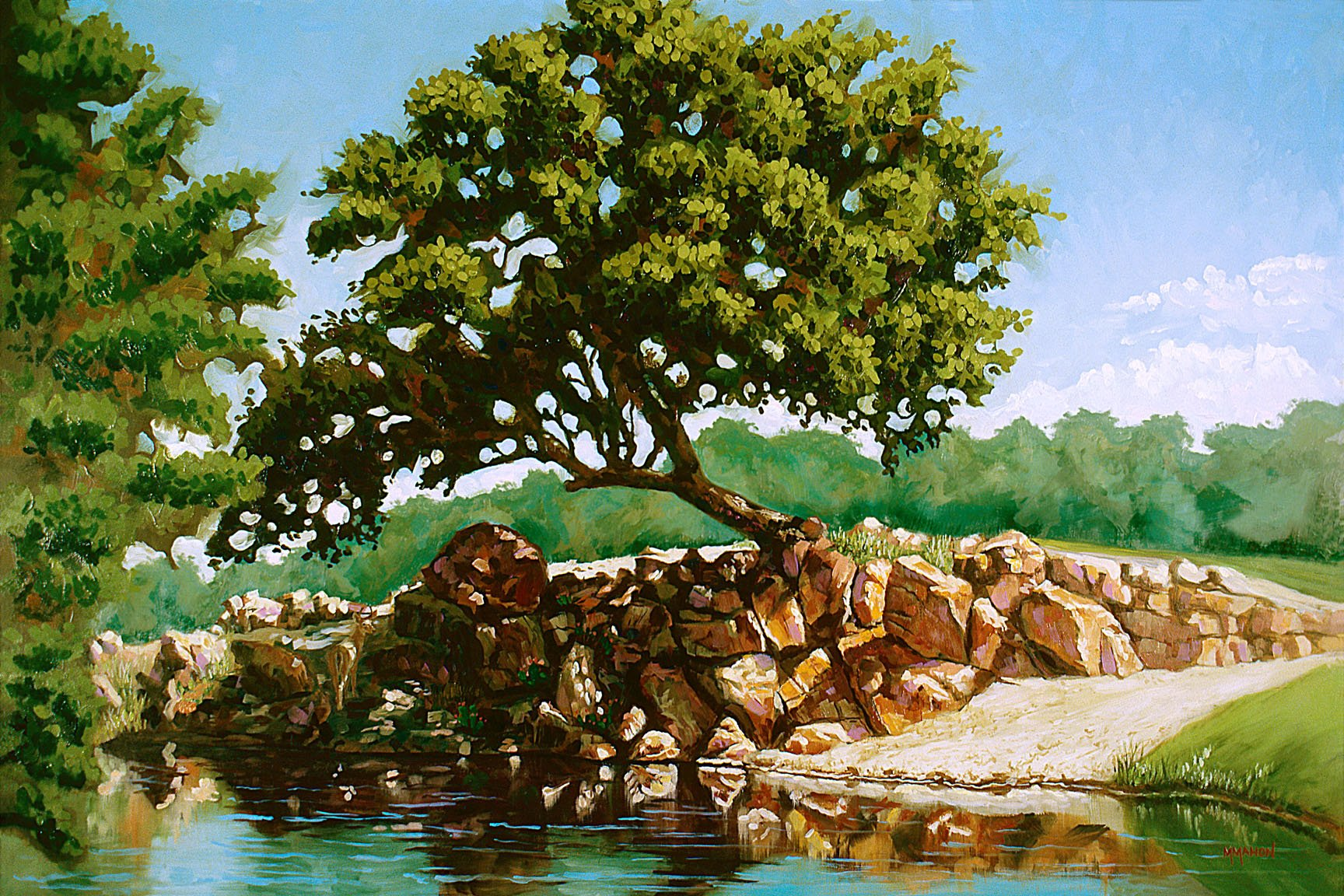 Hill Country Sparkle Landscape by Mike Mahon